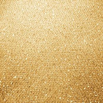 Glitter Slinky (Gold)